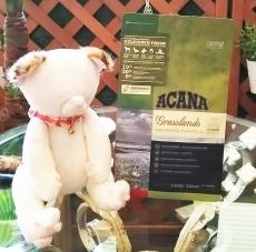 Acanaglasslandcat